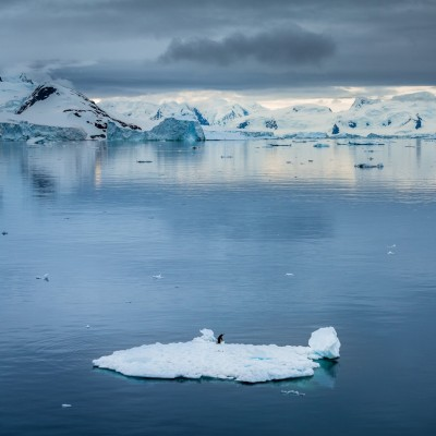 Floating in Antarctica